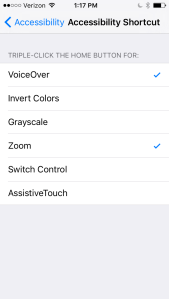 Screen shot of accessibility shortcut options in iOS