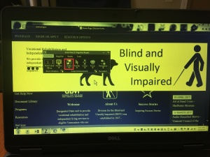 Image of laptop running ZoomText 11 with Yellow on Black enabled